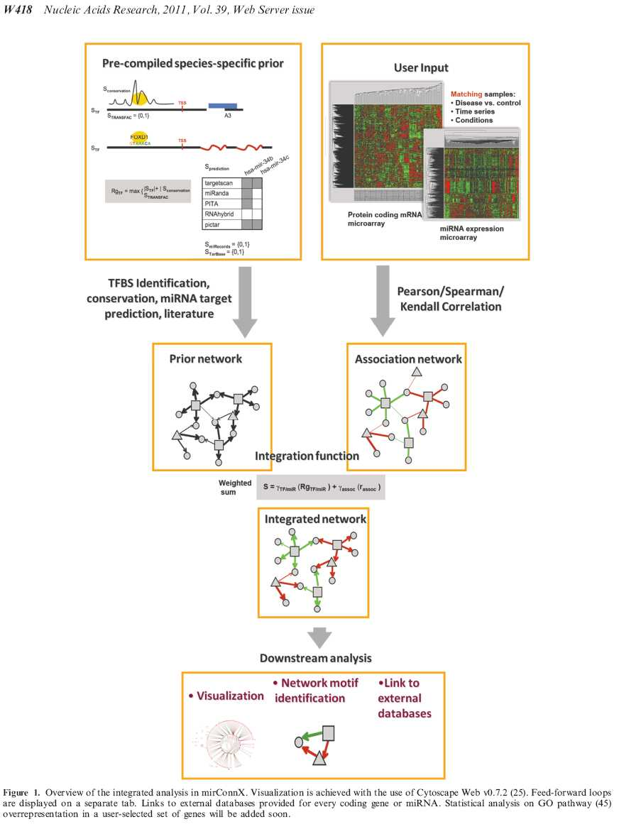 BioInformatics & BestKeeeper Software & Gene Quantification