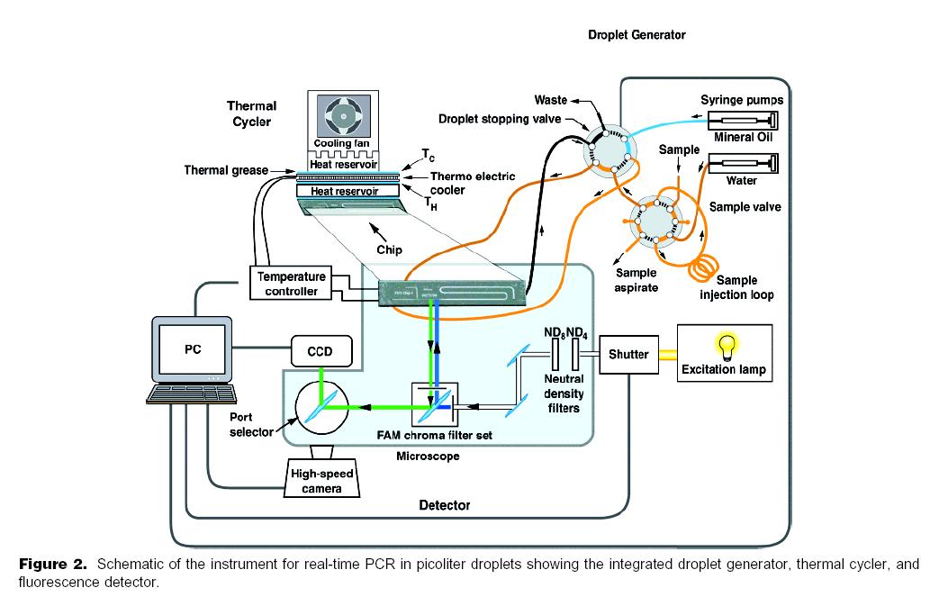 Loc Pcr Lab On Chip Pcr