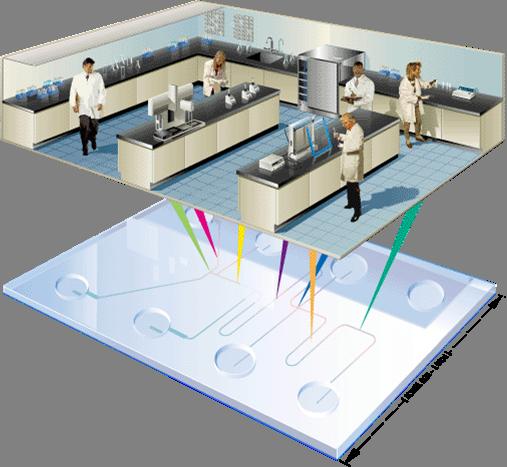 LOC PCR - Lab on Chip PCR