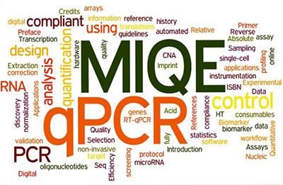 Miqe Guidelines Minimum Information For Publication Of Quantitative Real Time Pcr Experiments