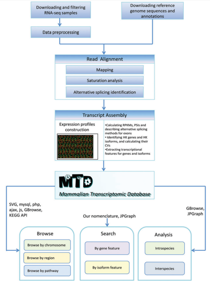 Gene Quantification & mRNA analysis methods & mRNA