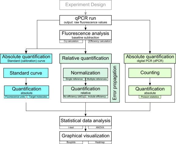 Bioinformatics Bestkeeeper Software Gene Quantification Homepage