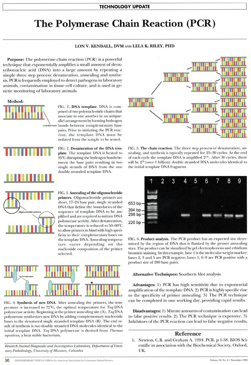 Gene Quantification & block RT-PCR