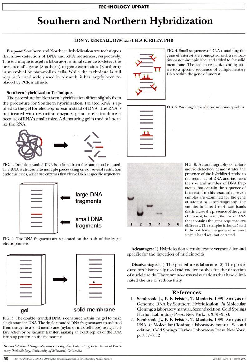www.Gene-Quantification.Info